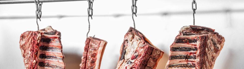 Dry Ager Reifeschrank zur Fleischveredelung
